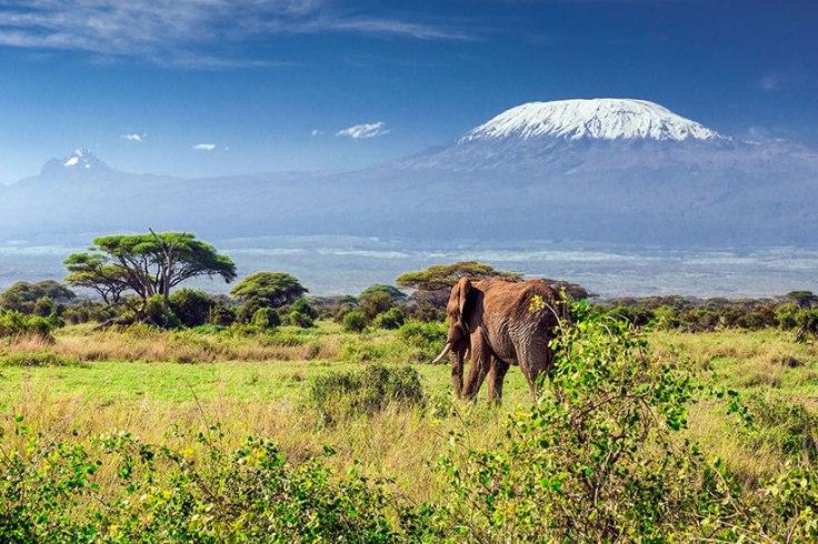 (Image)-image-Tanzanie-mont-Kilimandjaro-14-it_47915750-09032017