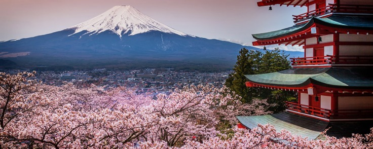 mont-fuji-cerisiers-japon-02-image-article